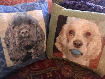 The cross-stitched pillows I made.